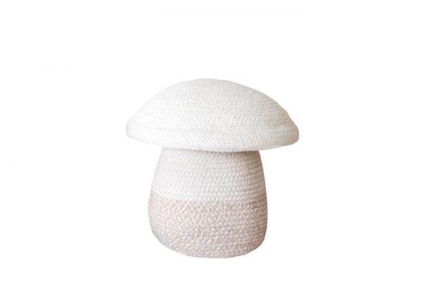 contenitore fungo