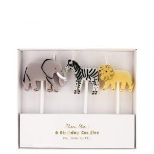 candele animali elefante zebra leone